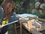 6:1 Scale Paint Brush