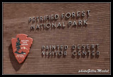 Petrified Forest US National Park