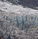 Fox Glacier walkers