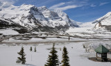 Mt Athabasca & Columbia Icefield