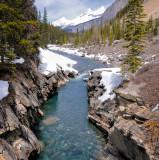 Icefields Parkway Creek