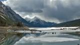 Medicine Lake brooding