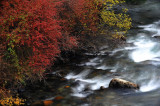 Colorful Stream 彩流