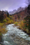 Stream, Changping Gully 長坪溝溪流