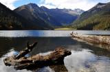 Logs and Lake, Wuxuhai 湖中水景