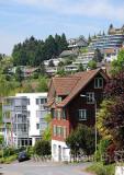 Walchwil (111248)