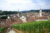 Schaffhausen (113142)