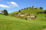 Rotenbach (115852)