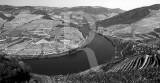 O Douro em Alijó