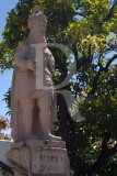 D. Afonso V, em Castelo Branco