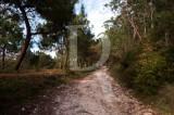 Troço do Caminho Real da Pederneira, situado junto à Ponte das Barcas (SIM)