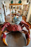 The Giant Crab