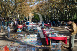 O Parque D. Carlos em 9 de novembro de 2008