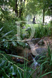 The Gulbenkian Gardens