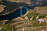 O Alto Douro Vinhateiro