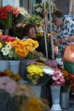 As Floristas do Rossio