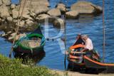 Pescador do Tejo
