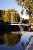 The Almonda River