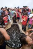 A Nazaré em 21 de junho de 2008