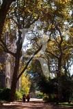 O Parque D. Carlos em 7 de novembro de 2007