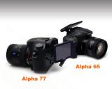 Sony Alpha 77  &  Alpha 65