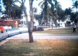 1972 - the beloved miniature train at the Crandon Park Zoo