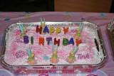 Princess Harlee's 3rd Birthday Party In Blue Ridge Georgia