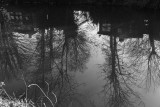 Oxford Canal Reflections