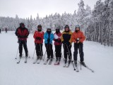 Downhill Skiing, January 2012