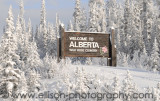 Welcome to Alberta!
