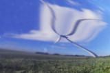 Windmolen-2.jpg