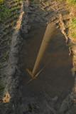 Windmolen-14.jpg