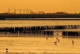 windmolen-d.jpg