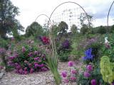Rosenpark 2009