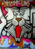 Italian Graffiti - Tiger