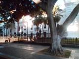 Plaza Bolivar Buildings (1).jpg