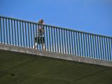 Hurry Hurry Cross the Bridge