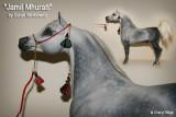 A Breyer Proud Arabian Stallion customised by Sarah Minkiewicz, USA