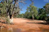 7729- Black Hill creekbed near Silverton