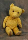 0021-unknown-bear