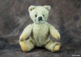 9262-old-bear