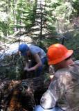 Crosscut sawing - 2.jpg