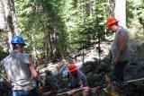 Crosscut sawing - 3.jpg