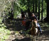 Trail Boss - Lance Holdt.jpg
