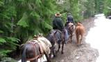 Trail Maintenace.jpg