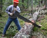 Dewey on the saw