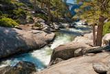 Yosemite Creek