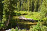 Cascade Cyn Tral