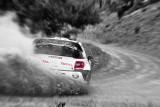 Al Attiyah Nasser (QAT) - Bernacchini G (I) Citroen DS3 WRC