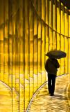 Au soleil.... sous la pluie...